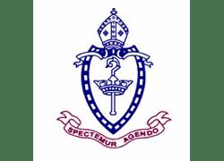 newcastle-grammer-logo